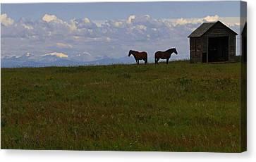 Panorama Of Alberta Canvas Print by Al Bourassa