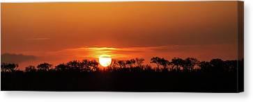 Panorama Of South African Sunset Canvas Print by Susan Schmitz