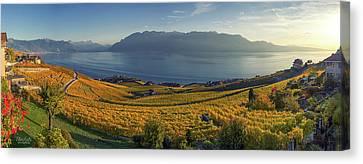 Panorama On Lavaux Region, Vaud, Switzerland Canvas Print