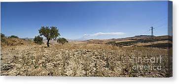 Panorama View Of Sicily With Smoking Etna Canvas Print by Wolfgang Steiner