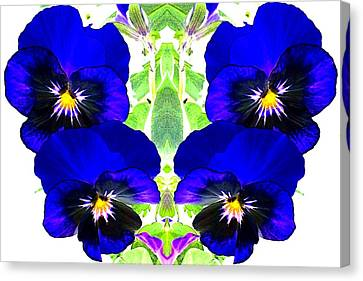 Pansy Pattern Canvas Print by Marianne Dow