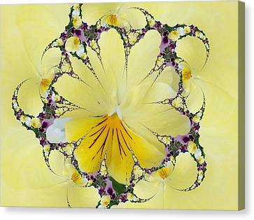 Pansy Swirls Canvas Print