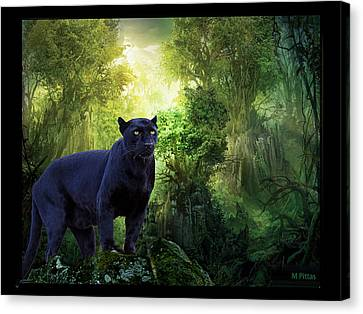 Panther Alert Canvas Print