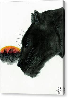 Panther At Dusk Canvas Print by Tiphanie Erickson