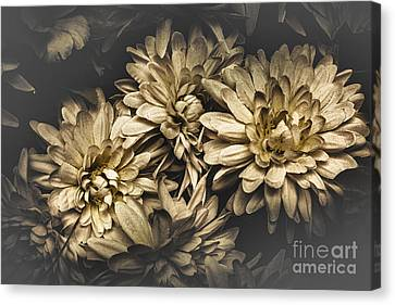 Canvas Print featuring the photograph Paper Flowers by Jorgo Photography - Wall Art Gallery