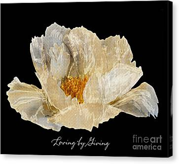 Paper Peony Loving By Giving Canvas Print by Diane E Berry