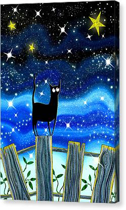 Fences Canvas Print - Paper Stars by Andrew Hitchen