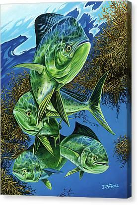 Papito Canvas Print by Dennis Friel