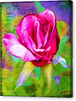 Pappy's Red Rose Canvas Print by Danielle Miller