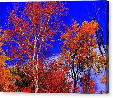 Paprika Canvas Print by Ed Smith