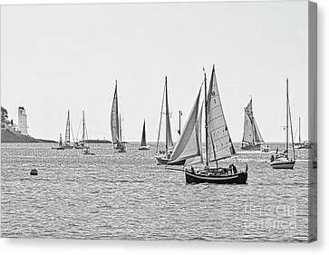 Parade Of Sail In Monochrome Canvas Print by Terri Waters