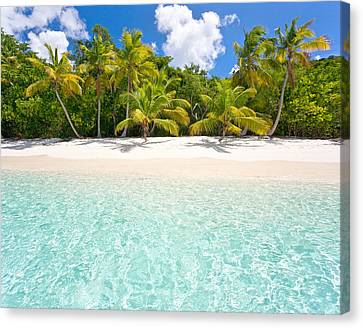 Michael Sweet Canvas Print - Paradise Beach Day by Michael Sweet