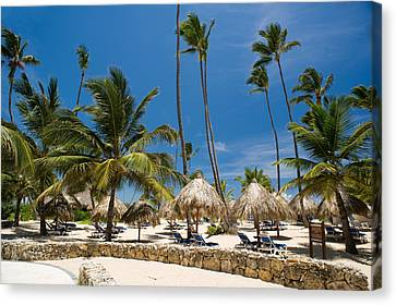 Palm Tree Canvas Print - Paradise Beach by Sebastian Musial
