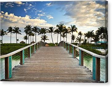 Paradise Beach Tropical Palm Trees Islands Summer Vacation Canvas Print by Dave Allen
