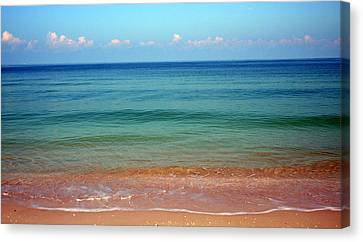 Paradise Found Canvas Print by Sean Allen