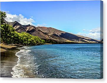Canvas Print featuring the photograph Paradise by Joann Copeland-Paul