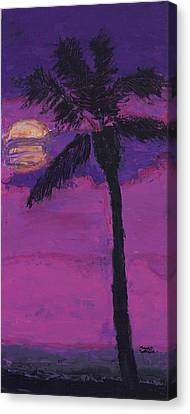 Paradise Palm Canvas Print by Maggie  Morrison