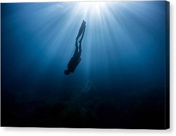 Apnea Canvas Print - Parallel World by One ocean One breath