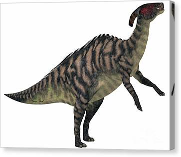 Parasaurolophus Canvas Print - Parasaurolophus Striped On White by Corey Ford
