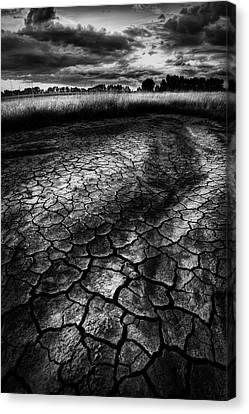 Canvas Print featuring the photograph Parched Prairie by Dan Jurak