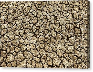 Land Feature Canvas Print - Parched Soil by Todd Klassy