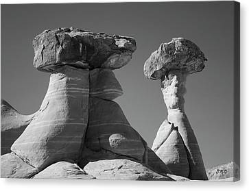 Rimrock Canvas Print - Paria Utah Xiii Bw by David Gordon
