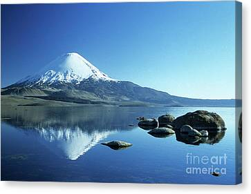Reflecting Water Canvas Print - Parinacota Volcano Reflections Chile by James Brunker