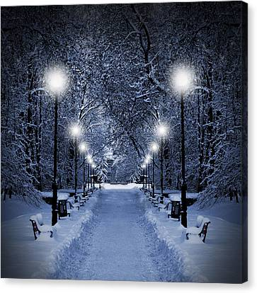 Park At Christmas Canvas Print by Jaroslaw Grudzinski