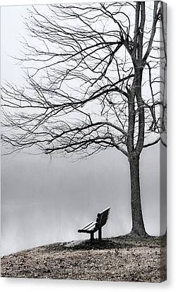 Park Bench And Leafless Tree In Fog - Hi-key Canvas Print