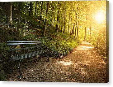 Park Bench In Fall Canvas Print by Chevy Fleet