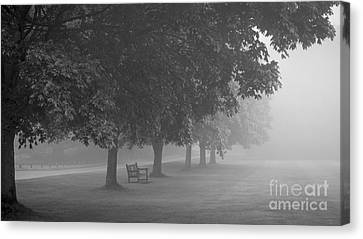 Overhang Canvas Print - Park Bench In The Mist by Richard Thomas