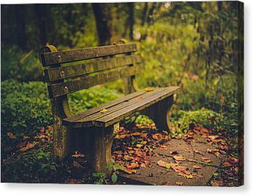 Park Benches Canvas Print - Park Bench by Shane Holsclaw
