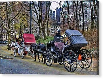Park Carriage  Canvas Print by Chuck Kuhn