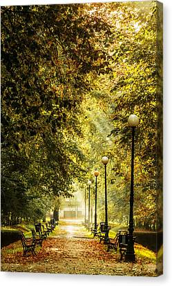 Park Lane Canvas Prints Fine Art America