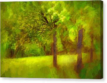 Park Canvas Print by Lutz Baar