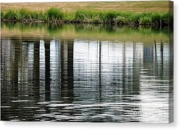 Park Reflections Canvas Print