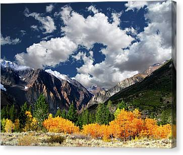 Parker Canyon Fall Colors California's High Sierra Canvas Print