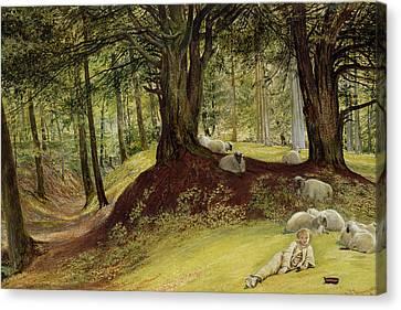 Woodlands Scene Canvas Print - Parkhurst Woods by Richard Redgrave