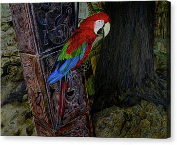 Parrot Painting Canvas Print by Liza Gonen