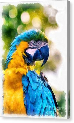 Canvas Print featuring the painting Parrot Watercolor by Edward Fielding
