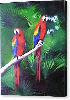 Parrots Molly And Polly Canvas Print