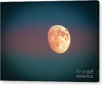 Partial Moon Canvas Print by Claudia M Photography
