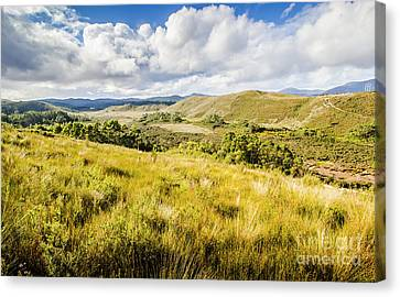Parting Creek Regional Reserve Tasmania Canvas Print by Jorgo Photography - Wall Art Gallery