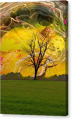 Party Skies Canvas Print by Jan Amiss Photography
