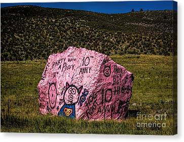Party With A Pig Canvas Print by Jon Burch Photography