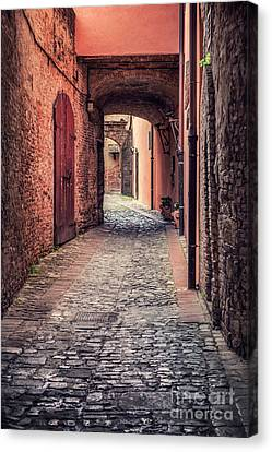 Passage Of Time Canvas Print