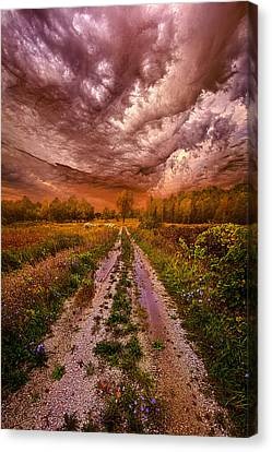 Passion Within Chaos Canvas Print by Phil Koch