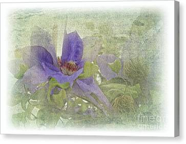 Passionflower Canvas Print by Lali Kacharava