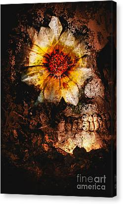 Past Life Resurrection Canvas Print by Jorgo Photography - Wall Art Gallery