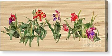 Canvas Print featuring the digital art Past Prime by Lois Bryan
